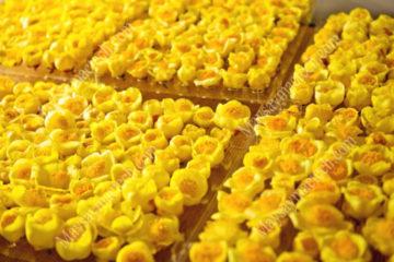 Sấy khô hoa trà vàng bằng máy sấy thăng hoa, giữ hình dạng, màu đẹp