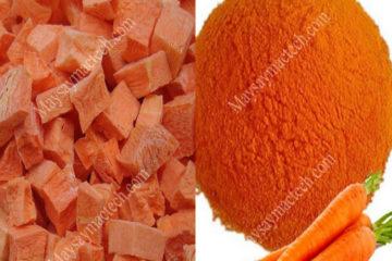 Cách làm bột rau củ sấy khô dễ dàng, bột mịn, màu đẹp, nguyên hương vị