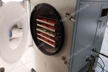Máy sấy thăng hoa mini, phù hợp cho sản xuất vừa và nhỏ