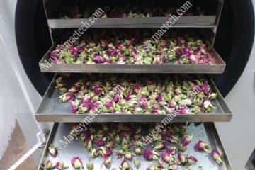 Máy sấy thăng hoa nụ hoa hồng cho sản phẩm nụ hoa hồng khô như nào