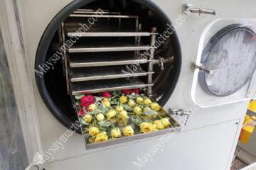 Cách sấy khô hoa hồng giữ nguyên bông, nguyên màu sắc
