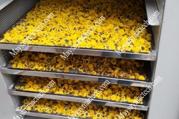 Dịch vụ sấy hoa cúc vàng, hoa trà vàng, hoa hồng chất lượng cao