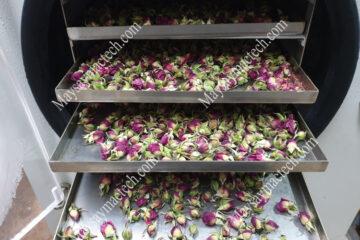 Dịch vụ sấy nụ hoa hồng, nụ hoa trà vàng với khối lượng dưới 20kg