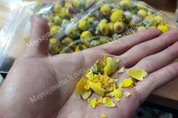 Sấy khô nụ hoa trà vàng để giữ nguyên nụ, nguyên màu, khô giòn