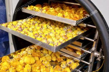 Phương pháp sấy hoa trà vàng, khô hoàn toàn, nguyên màu sắc
