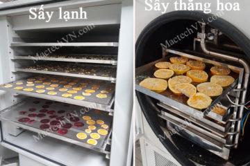 Hoa quả sấy thăng hoa và sấy lạnh, sự giống và khác nhau như nào