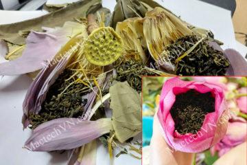 Đặc điểm chè ướp sen sấy thăng hoa hay trà sen sau sấy khô
